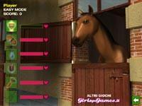 Giochi di corse di cavalli i migliori giochi su gamesover for Giochi di cavalli da corsa