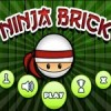 Ninja Brick Android