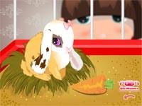 Coniglietto Buddy