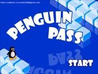 Penguin Pass: Lo Stretto Del Pinguino