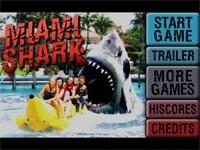Miami Shark