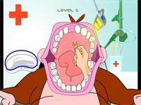 Il Dentista Dei Gorilla: Gorilla Dentist