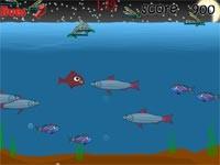 Fish Day: Un Giorno Da Pesce