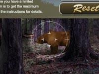 Caccia Nella Foresta