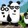 3 Pandas