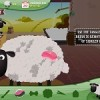 Parucchiere Di Pecore